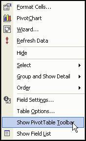 pivot_table_show_toolbar